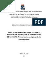 Monografia Versão Biblioteca