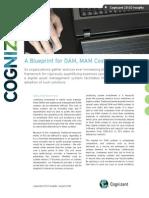 A Blueprint for DAM, MAM Cost Avoidance