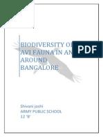 birds in and Around Bangalore