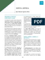 18-espina.pdf