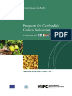 Prospects+for+Cambodia+Cashew+Sub-sector