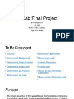 Determinant Matlab Project