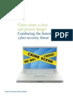 Us_aers_Deloitte Cyber Crime POV Jan252010