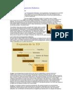 Teoría de La Transposición Didáctica