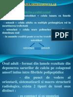 Semiologia Aparatului Osteoarticular