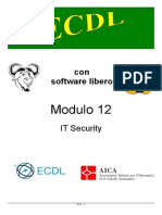 ECDL - It Security