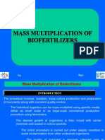 Mass Multiplication of Biofertilizer
