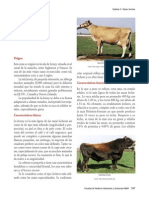 09Jersey.pdf