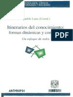 Matilde Luna, Itenerarios Del Conocimiento, Formas Dinámicas y Contenido, Un Enfoque de Redes