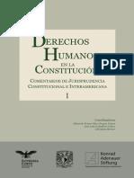 Derechos Humanos en La Constituci n. Comentarios de Jurisprudencia Constitucional e InteramericanaI