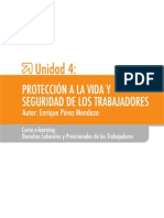 Comité Paritario PDF