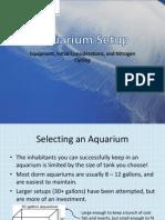 01 aquarium setup