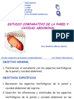 Pared y Cavidad Abdominal-comparada