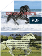 DISFUNCION ERECTIL.pptx1