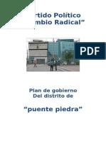 Diagnostico Puente Piedra