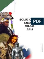 Solucionario Ensayo SH-044 2014