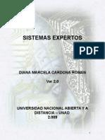 M_sistemas Expertos Ver 2.0_2009