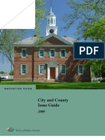 City and County Issue Guide 2009