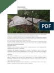 ABONO ORGÁNICO FERMENTADO.docx