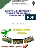 Clase 6 Sistema de Envasado y Embalaje Para Productos Frutas y Hortalizas Frescas
