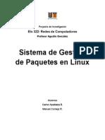 Sistema de Gestión de Paquetes en Linux. Carlos Apablaza - Manuel Cornejo