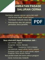 HAMBATAN PASASE SALURAN CERNA.ppt
