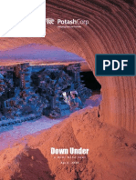 POT Mini Mine Tour Brochure