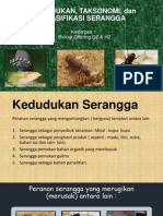 Klasifikasi Serangga