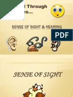 The World Through Our Senses Presentation