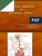 Aparatul Digestiv Si Glandele Anexe