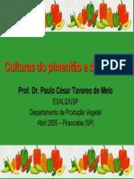 Culturas Do Pimentao e Da Pimenta