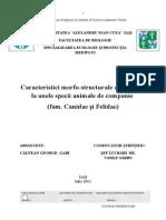 Publish Exercises 2014