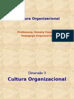 Aula de Cultura Organizacional