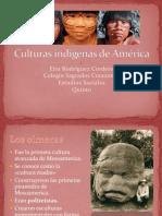 culturasindgenasdeamrica-111108171632-phpapp01