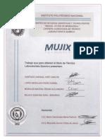 Titulación Equipo 5 Mujix
