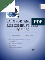 Importancia de Los Combustibles Fósiles
