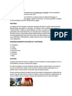 Municipios de Chalatenango Estrellas