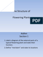 flowering plants structureud 06021014