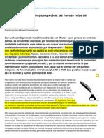 Contralinea.info-Pueblos Indgenas y Megaproyectos Las Nuevas Rutas Del Despojo