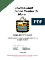 Expediente Tecnico Del Municipio Tambo de Mora