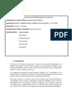 INFORME Nº 06 Chazo.docx