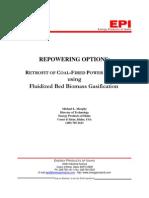 Gasifier Retrofit MLM