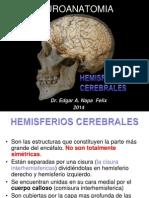 5-1 Hemisferios Cerebrales 2014-i