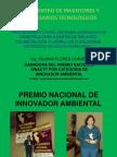 silvana-flores2.pdf