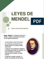 Leyes de Mendel5 [Recuperado]4