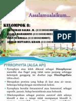 PPT euglenophyta
