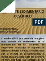 Exposicion Final Ambiente Desertico