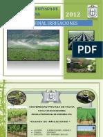 Examen Irrigaciones Ultimo