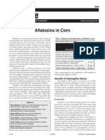 Aflatoxins in Corn