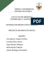 Proyecto Impacto Social